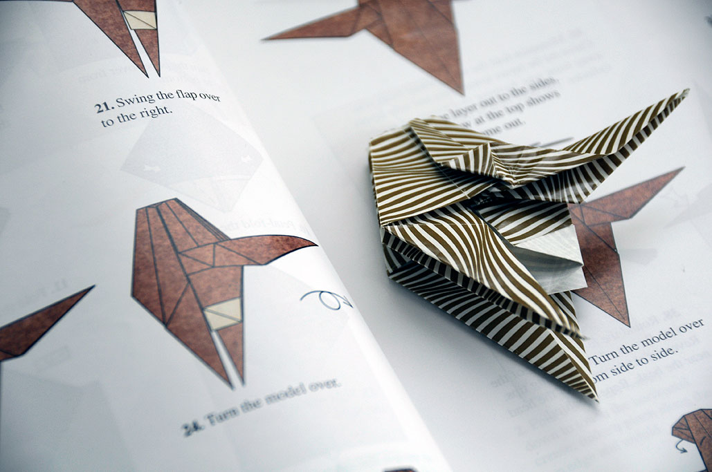 Origami Instructions: Beth Johnson's Origami Design Secrets | 683x1029